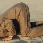 dirigeant grande distribution fait l'autruche il a la tête dans le sable